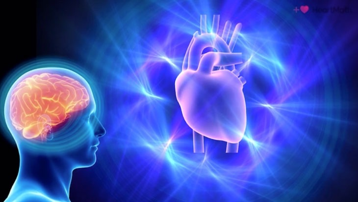 Heart Brain Communication